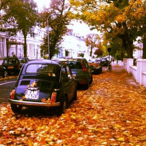 76f6902122212f5216e034c4d6d1678c--falling-leaves-london-calling